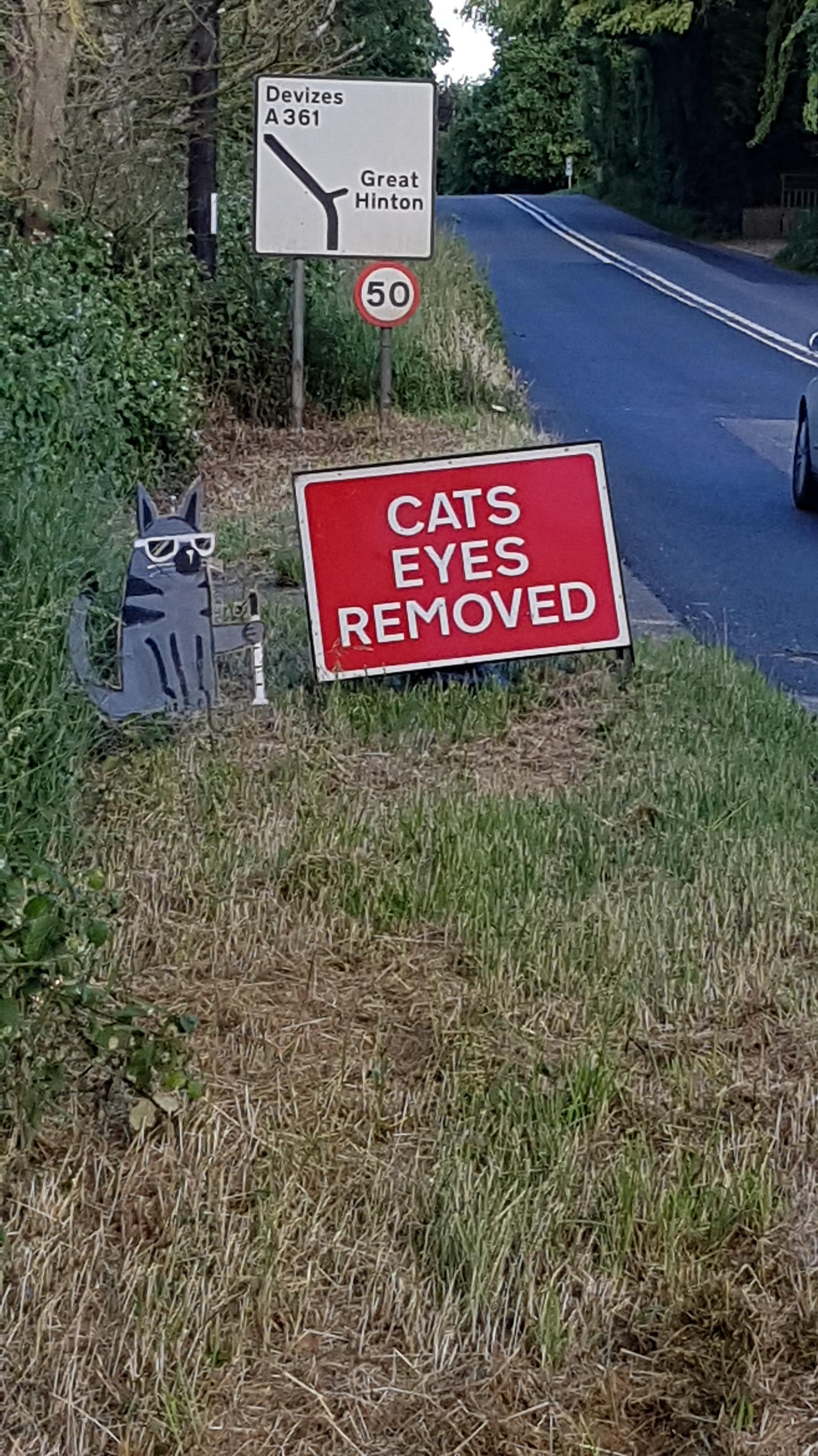 Cat sitting next to sign causes much amusement on the A361
