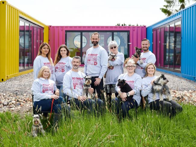 The Poppy's Picnic team with some of their dogs Photo: Chris Allerton