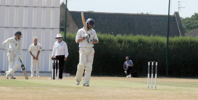 Wiltshire skipper ed young