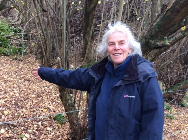 The Woodland Trust wants children to help plant 5,000 trees at Avoncliff Woo