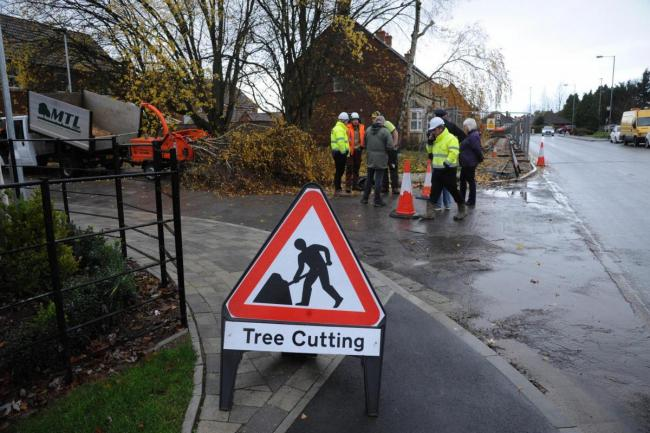 Trowbridge residents step in as chainsaws start cutting down trees