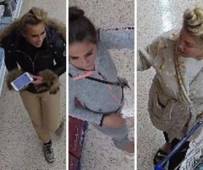 Police want to speak to these three women after a theft from the Tesco store in Chippenham