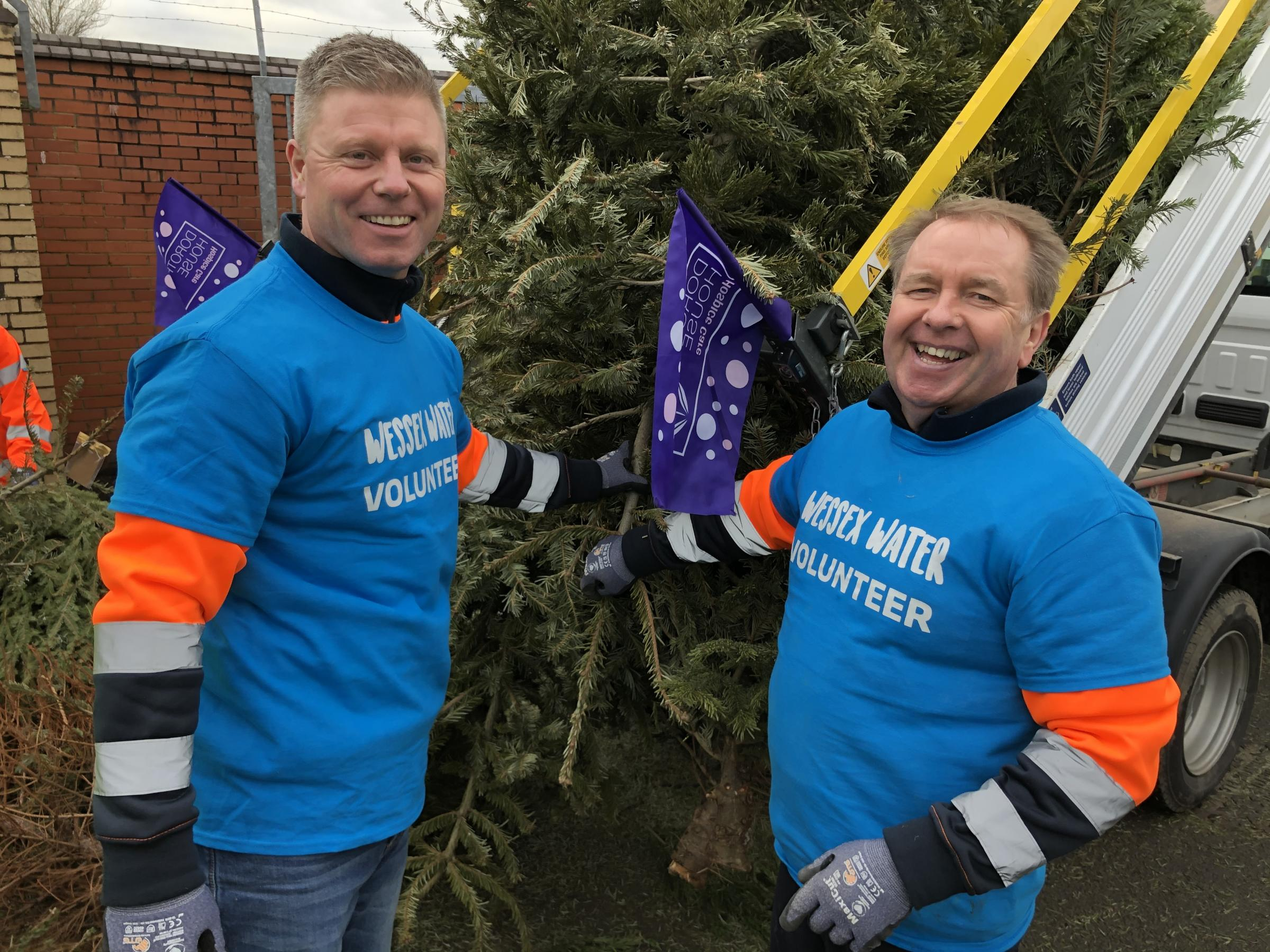 Tree collection breaks all records
