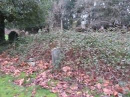 Some of the gravestones in the Down Cemetery have been overcome by brambles