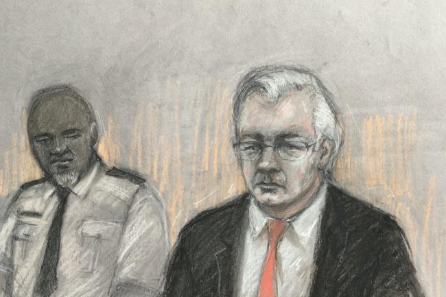 Court artist sketch by Elizabeth Cook of Julian Assange (Elizabeth Cook/PA)