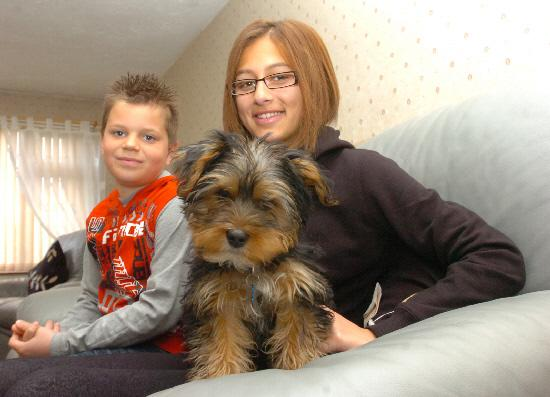 Marley the four month old puppy who had to be rescued after becoming stuck in the sofa with Jack and Sophia Preston after the ordeal