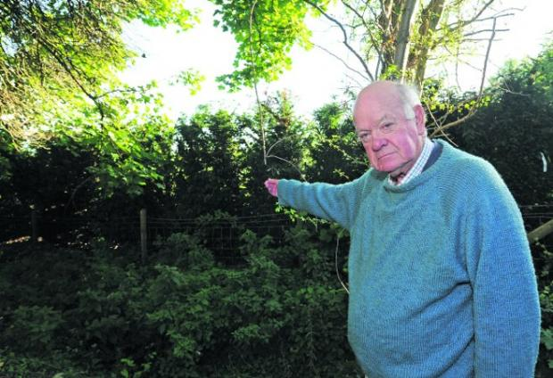 Christopher Parson wants the yew hedge removed from the boundary of his home near the Priory Church   Photos: Trevor Porter (41058)