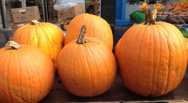 Grow your own pumpkin carving