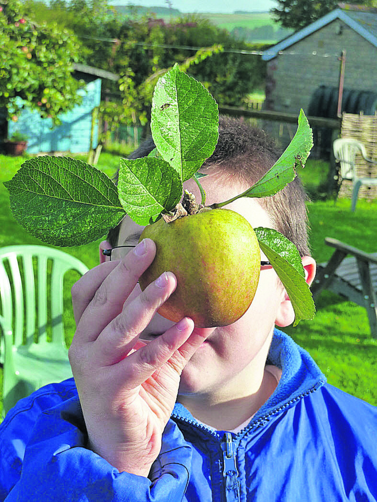 Codford arty orchards project proves most fruitful