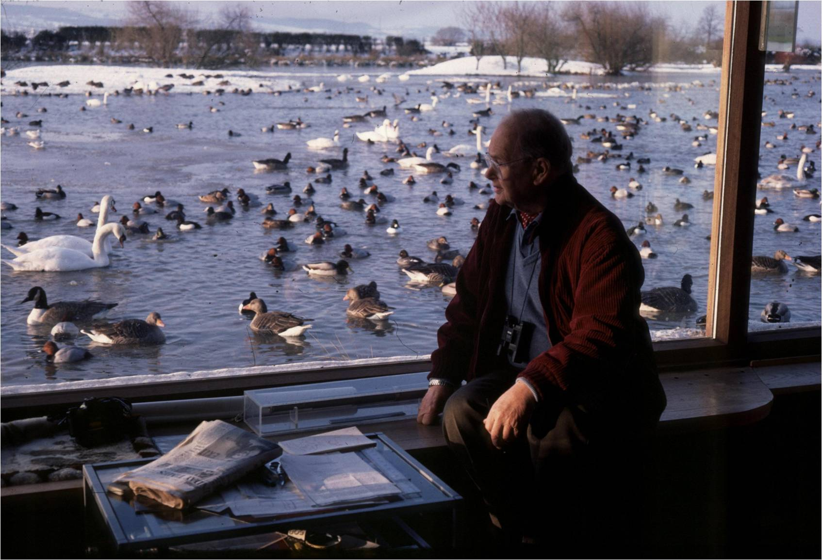 Members of North and West Wiltshire National Trust Association visited Slimbridge, founded by the late Sir Peter Scott, pictured