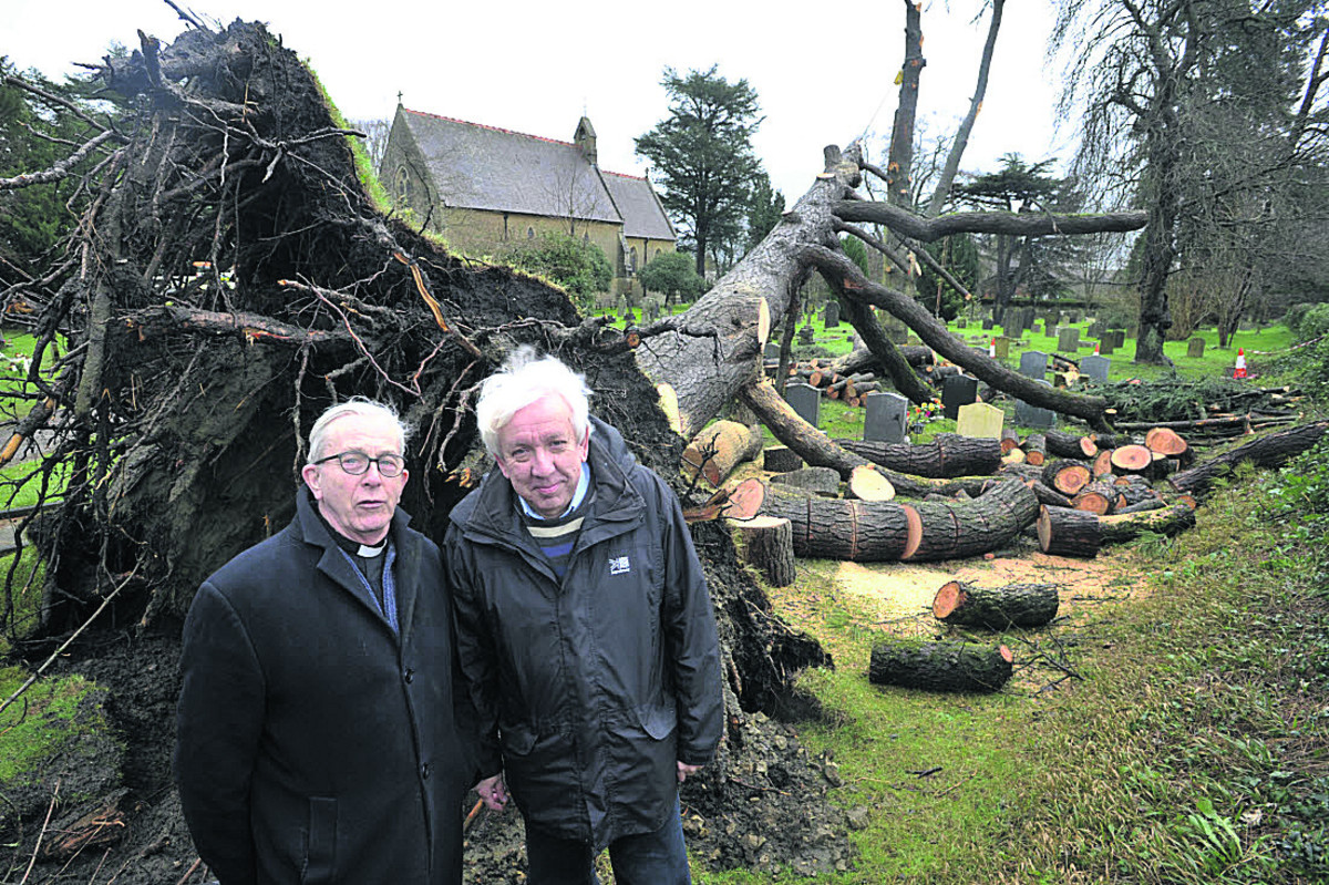 Warminster Church launches appeal to repair tree damage