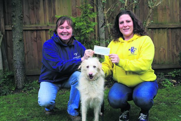 Wiltshire Times: Jan Lake, chairman of trustees of GRWE, left, receives the cheque from Jo Middleton, who will now be caring for lurcher Mishka