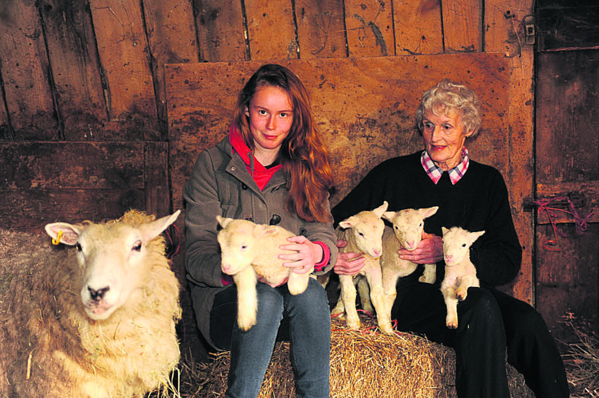 Marie Escott and granddaughter Chloe Keen with the four lambs