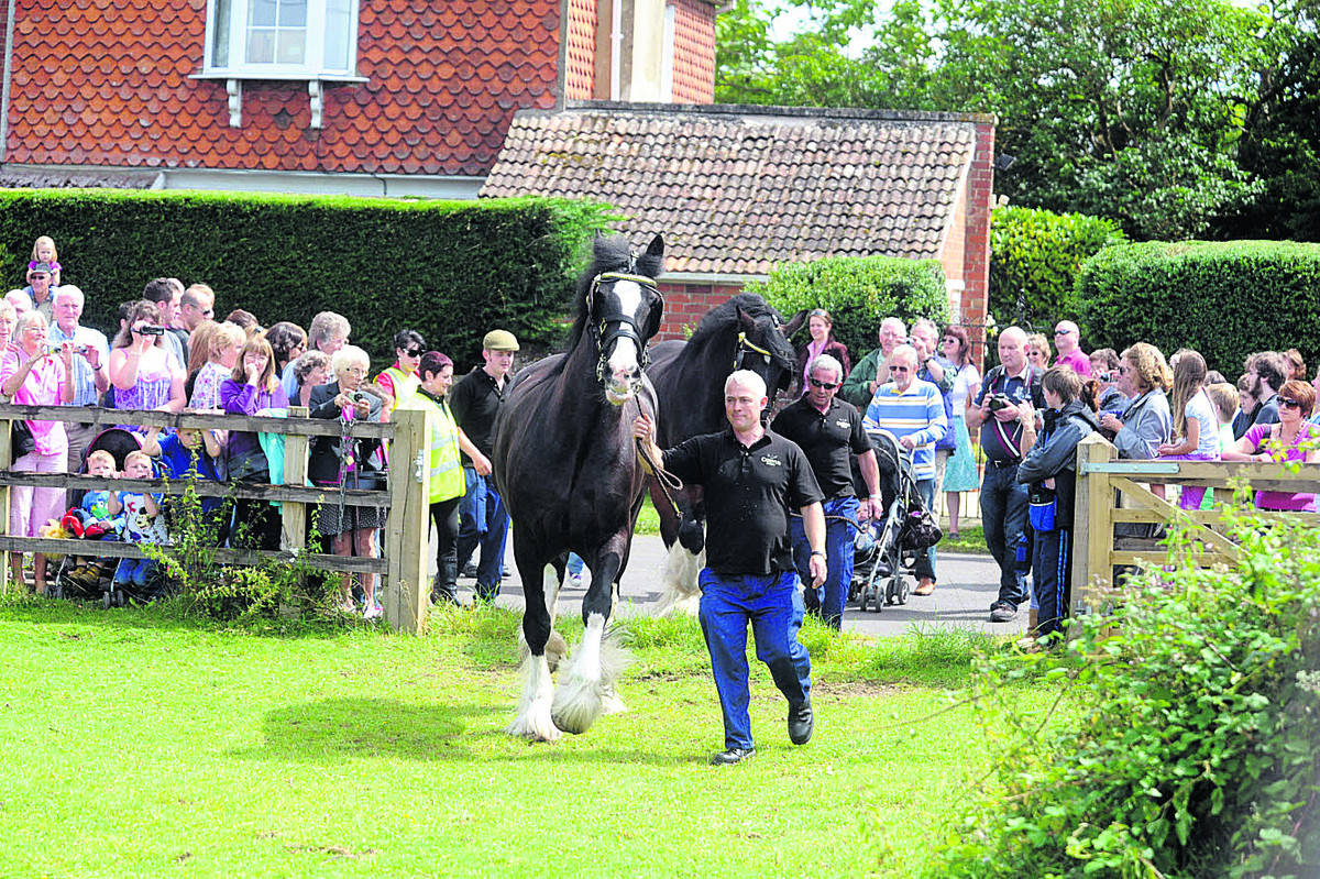 Decision over cutting long-serving horsemen's jobs difficult, says Wadworth