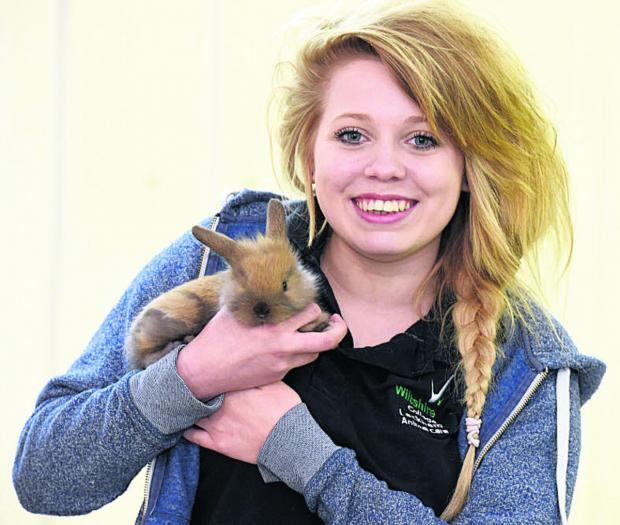 Amber Keighley, an animal management student, with a lionhead lop rabbit