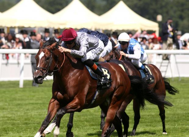 Toronado and Richard Hughes on their way to victory at Royal Ascot today