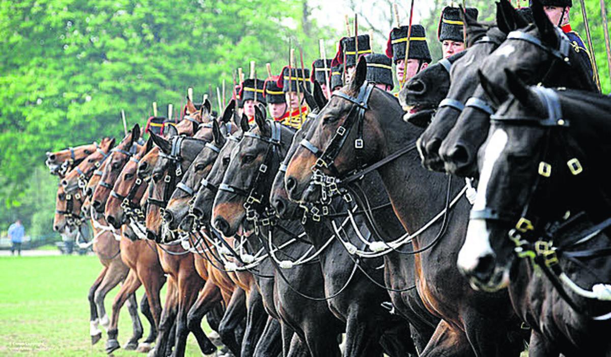 Royal Horse Artillery Performance Polo