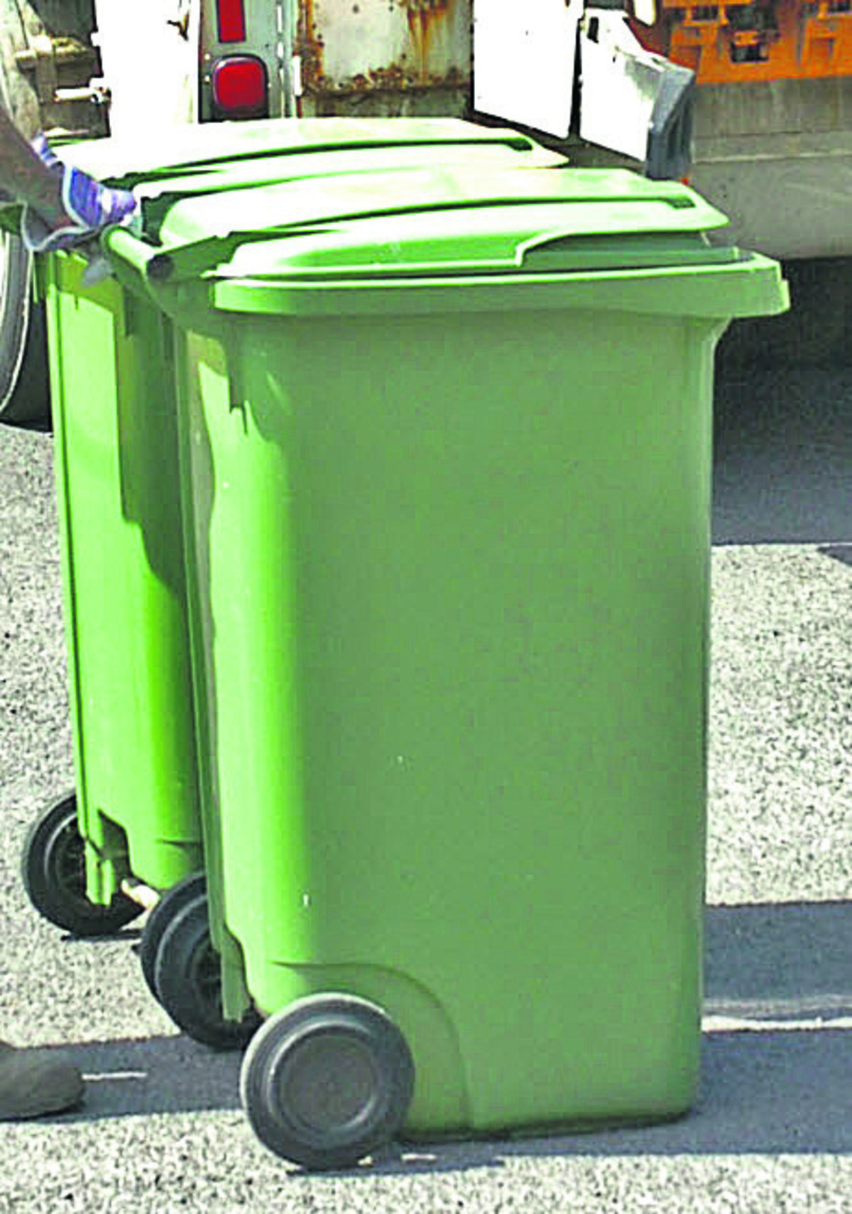 Garden waste collections will come to an end in Wiltshire