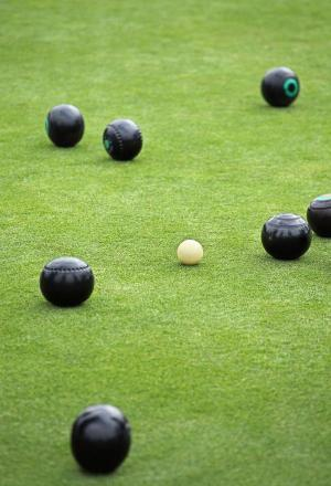 BOWLS: Pairs delight for Devizes and Bassett