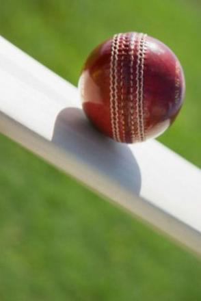 CRICKET: Wiltshire name squad for Trophy semi final