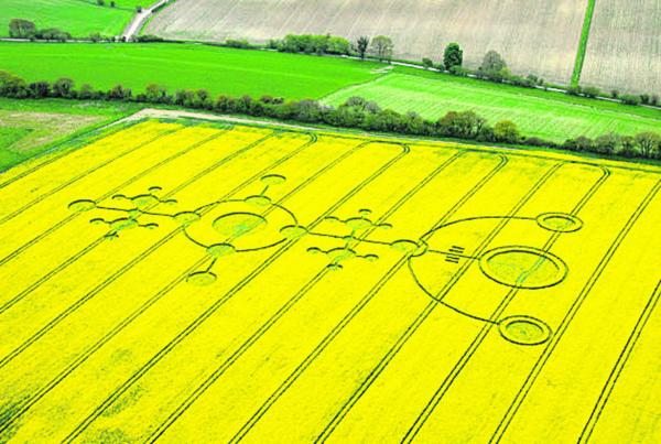 Wiltshire's crop circles not just work of mankind, Devizes exhibition claims