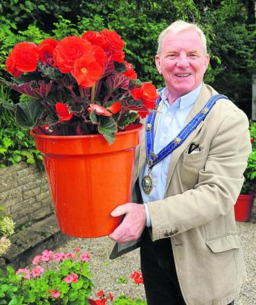 Bradford on Avon mayor Cllr John Potter brings out the big begonias to promote the town's forthcoming Flower and Produce Show scheduled for September 7