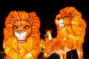 You can own one of these giant lion Chinese lanterns, seen by 150,000 visitors to Longleat