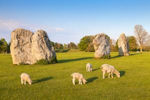 Part of the stone circle at Avebury Great Henge, a UNESCO world heritage site dating back 5000 years, in Wiltshire, England. The World Heritage Site includes several Neolithic remnants including Stoinehenge, West Kennet Long Barrow and Silbury Hill..