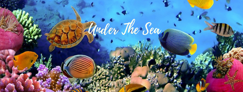 Chapmanslade Explorer Trail presents Under the Sea